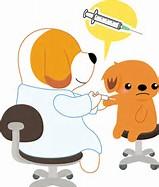 予防接種 犬